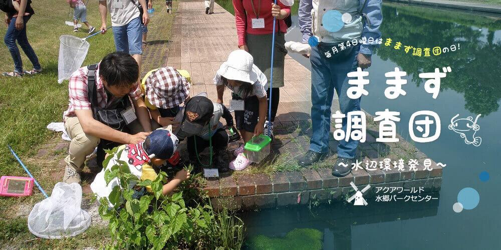 ままず調査団~水辺環境発見~